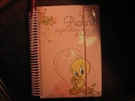 My old 2008 Tweety Planner which I use for note-taking!
